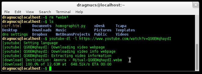 Youtube-dl : téléharger les vidéos YouTube et autres services.